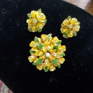 Vintage Set of clip on earrings and brooch